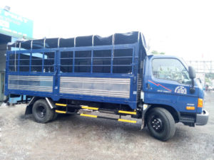 xe tải hyundai hd800